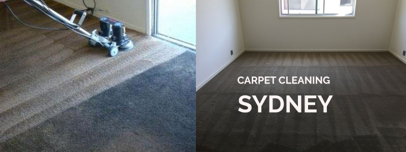 Carpet Cleaning Lower Mangrove