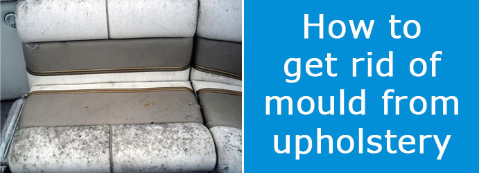 Get Rid of Mould From Upholstery in Sydney