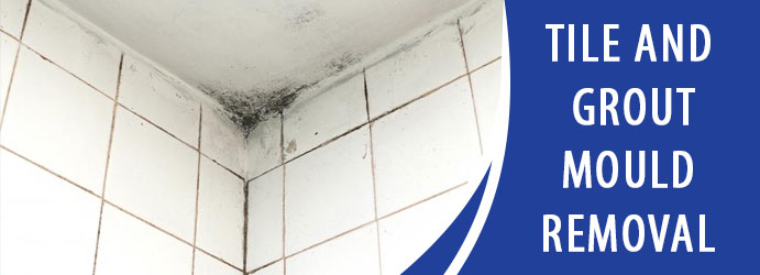 Tile and Grout Mould Removal Bullaburra