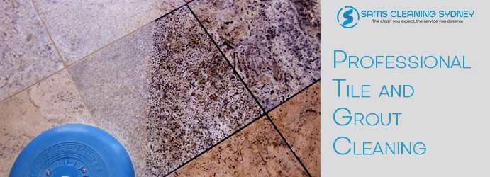 Tile and-Grout Mould Removal