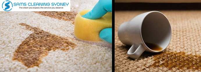 Carpet Stain Removal Mortdale