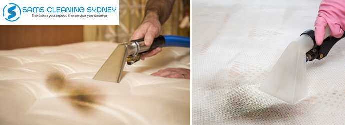 Mattress Mould Removal Hall
