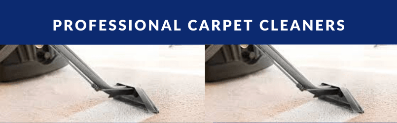 Why Now is a Good Time for Carpet Cleaning