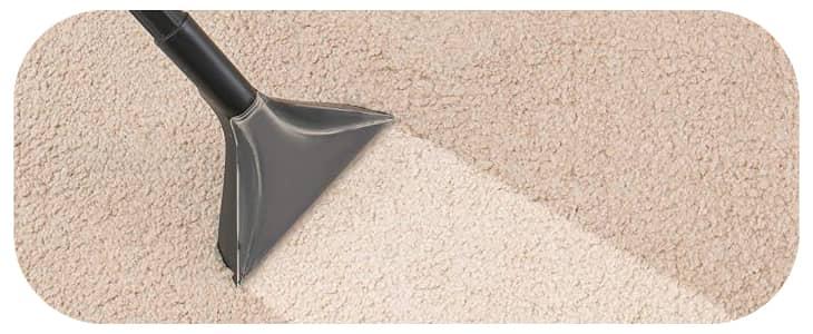 https://samscleaningsydney.com.au/wp-content/uploads/2021/04/Carpet-Cleaning-Auburn.jpg