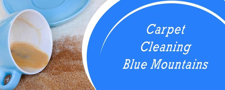 Carpet Cleaning Blue Mountains