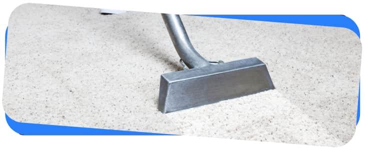 Carpet Cleaning Burwood
