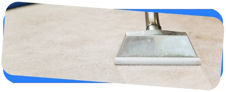 Carpet Cleaning Hunters Hill