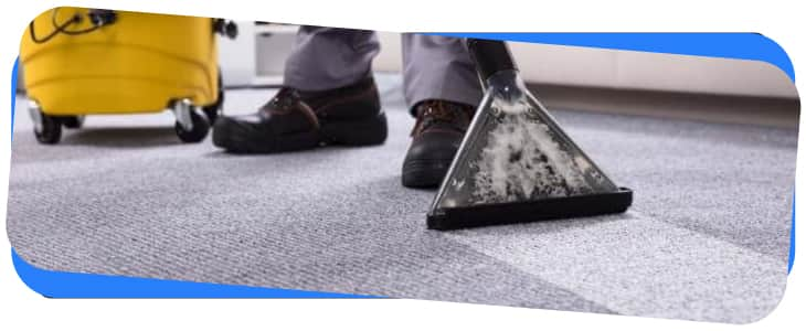 Carpet Cleaning Services in Waverley