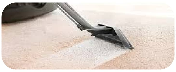 Carpet Cleaning Snowy River