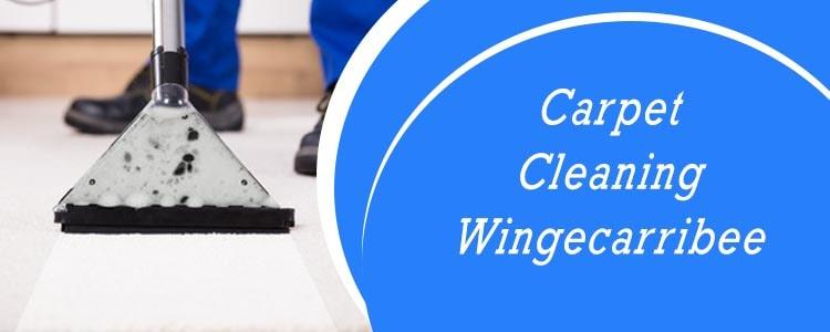 Carpet Cleaning Wingecarribee