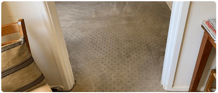 Cleaning Tips for Long Lasting Carpet